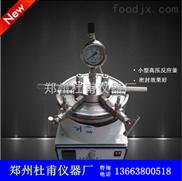 微型不锈钢高压反应釜'实验室\小型高压反应釜耐腐蚀