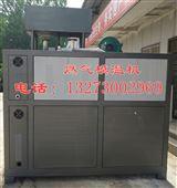 永州20万大卡燃气导热油炉/燃气模温机厂家