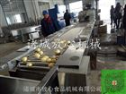 FX-1500土豆清洗风干线