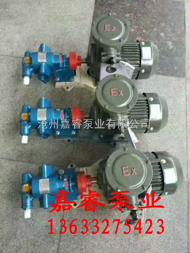kcb55 嘉睿泵业2017新品kcb-55齿轮油泵 甘肃铸铁材质齿轮泵