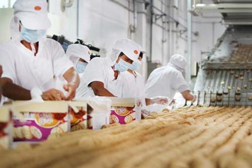 饼干多元化、高端化发展 技术升级必不可少