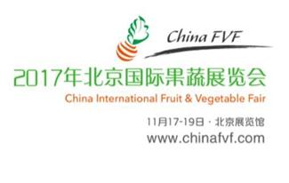 2017骞村��浜��介������灞�瑙�浼�锛� ChinaFVF 2017锛�