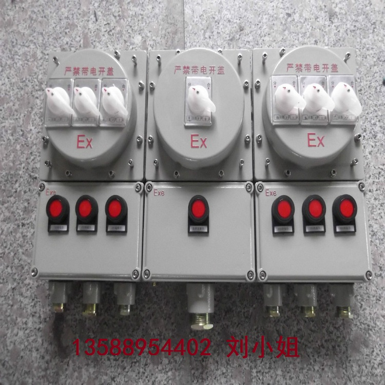 多回路防爆动力检修箱安装方式选择:挂式/立式