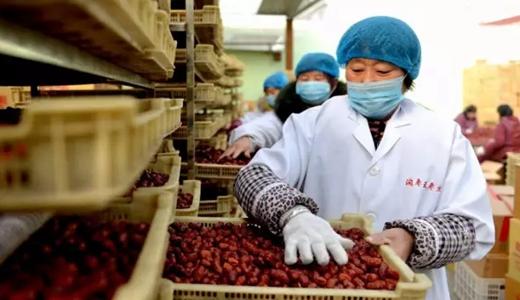 政策刺激农产品加工业发展 为相关食品机械企业带来福音