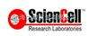 Sciencell一级代理Sciencell干细胞培养相关产品供应Sciencell中国代理商无血清培养基现货供应