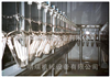 肉类产品自动化深加工流水线