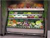 水果保鲜冰柜