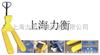 HCS昆明电子叉车称,液压叉车称生产厂家