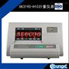 H1C计重计重仪表标配仪表显示器