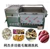 LJQX-1800厂家专业供应 荸荠清洗设备 毛辊荸荠清洗机 马蹄清洗机哪家好毛刷清洗价格